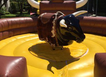 rodeo-taureau-mecanique-structure-gonflable-nice-06-paca-12